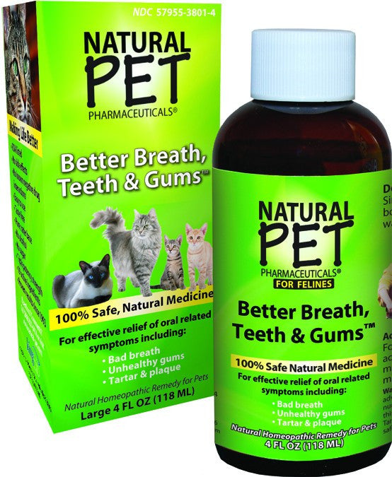 Dietary Supplement - King Bio Cat Teeth & Gums 4 OZ