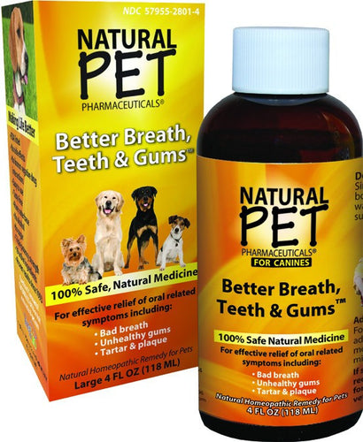 Dietary Supplement - King Bio Dog Teeth & Gums 4 OZ