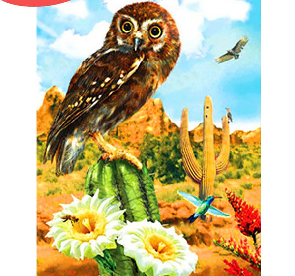 Owl Diamond Mosaic Sale Pictures With Rhinestones