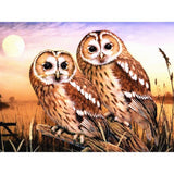 5D Diamond Painting Animal Owl Full Square