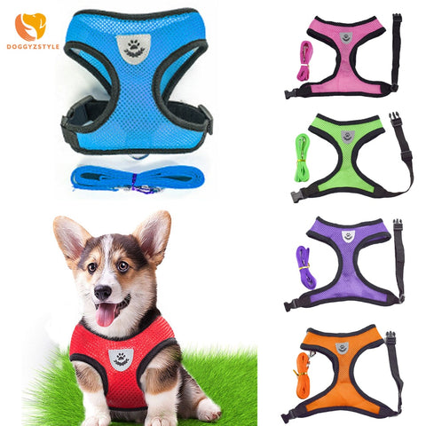 Breathable Mesh Small Dog Pet Harness Leash Set