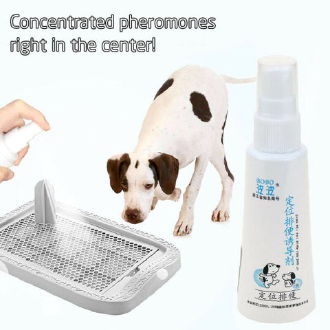 Pet potty training spray