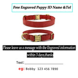 Pet Dog Collars Personalized Custom Leather Dog Collar