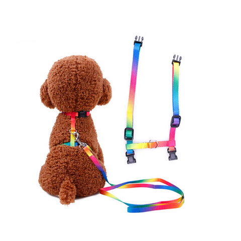Polyester Cat Harness And Leash Set Pet Kitten Small Dogs