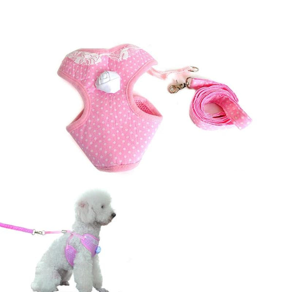Pet Dog Cat Harness and Leash Outdoor Walking Pet Lead