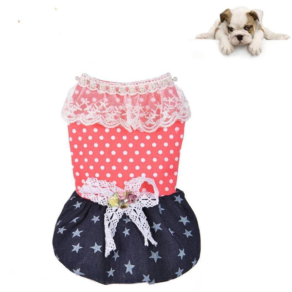 High Quality Wave Point Star Jean Dog Skirt