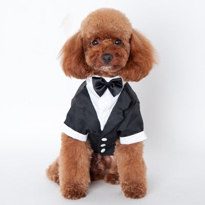 Dog Gentleman Suit Dress Clothes Wedding Dress for Dogs