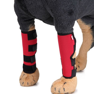 Dog Knee Pads Heal Pain By Injury Or Surgery Prevent Pets