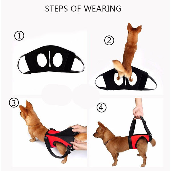 Dog lifts support vest | handle lifting harness for dogs