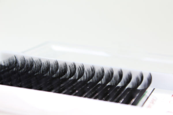 Eyelash Extensions Trays
