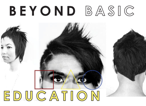 Beyond Basic Education