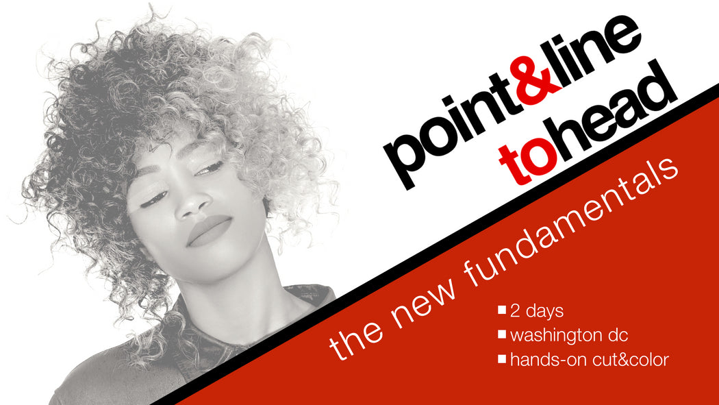 Point&Line to Head: The New Fundamentals