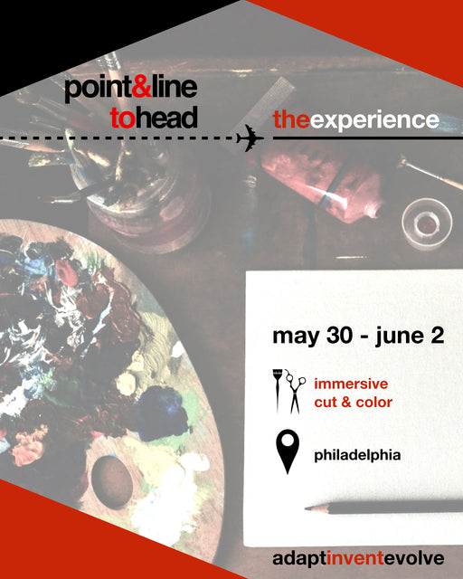 Point&Line To Head: The Experience