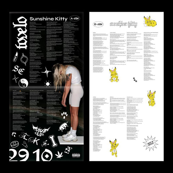 Sunshine Kitty Standard Black Vinyl