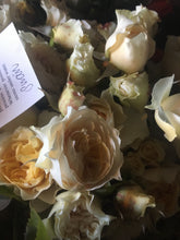 Fresh cut flowers - Cream, Ivory, White