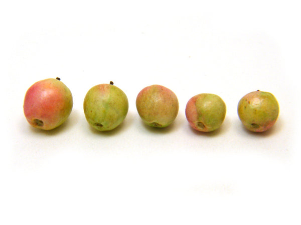 Miniature Apples - Woody