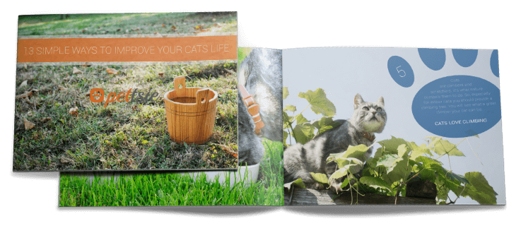 13-simple-ways-to-improve-cats-life-e-book
