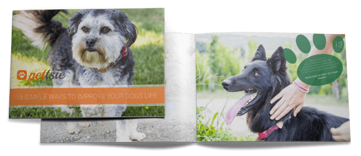 15-simple-ways-to-improve-dogs-life-e-book