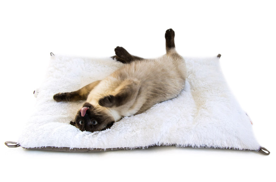 pettsie-cat-bed-mat-fluffy-convertible-foldable-cotton-cozy-bed-soft