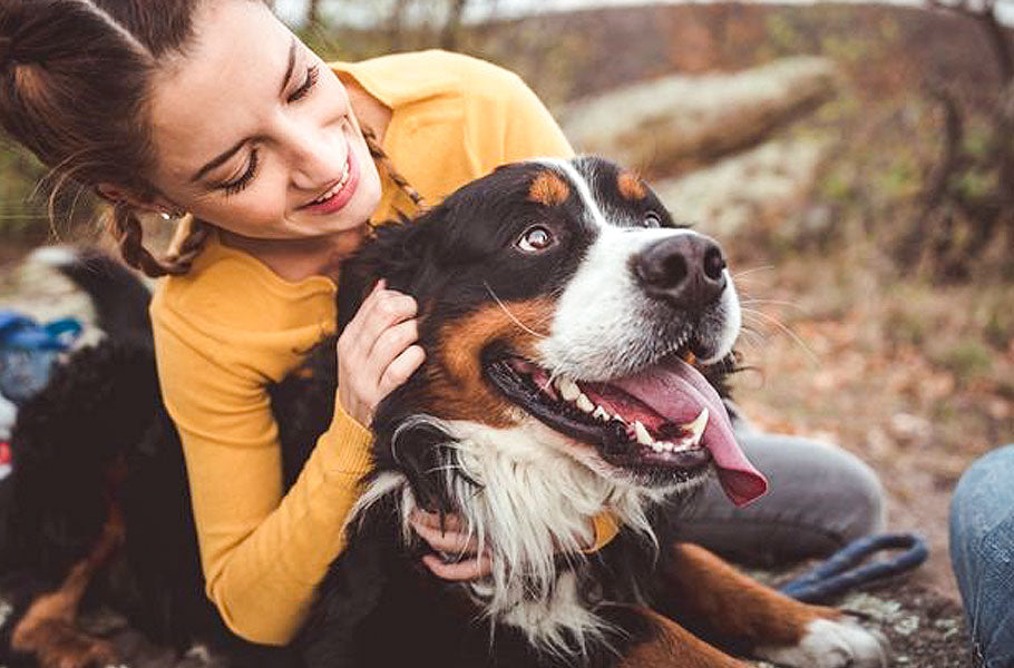 pettsie-main-reasons-why-people-are-the-happiest-when-with-dogs