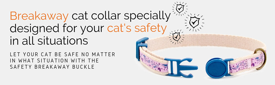 pettsie-why-your-cat-needs-a-safe-breakaway-buckle-collar-safe