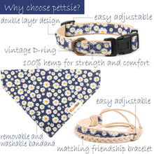 pettsie-hemp-dog-collar-bandana-matching-friendship-bracelet-gift-box-features