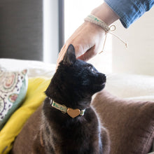 pettsie-green-cat-collar-heart-matching-friendship-bracelet-feline