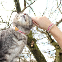 pettsie-pink-cat-collar-wood-heart-friendship-bracelet-nature