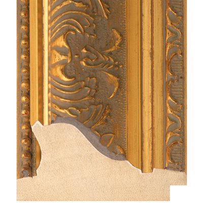 Beautiful Antique Style Aged Gold Timber Frame