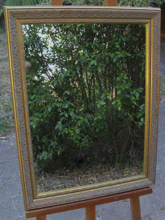 Elegant Ornate Antique Style Gold Timber Framed Wall Mirror
