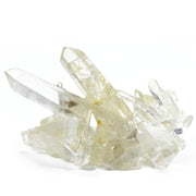 Maxi Quartz Crystal Power