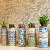 Mini Succulent Crochet Planters by high.fibre.diet