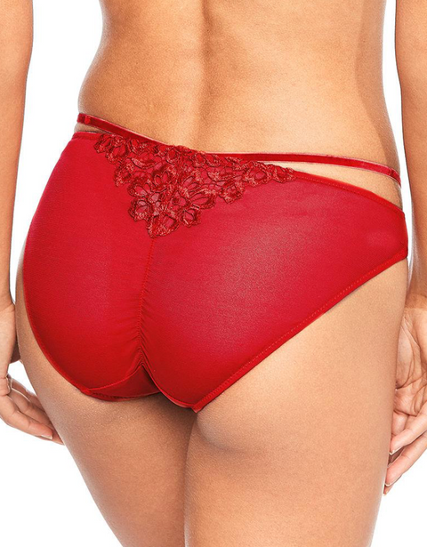 Red Dahlia Brief