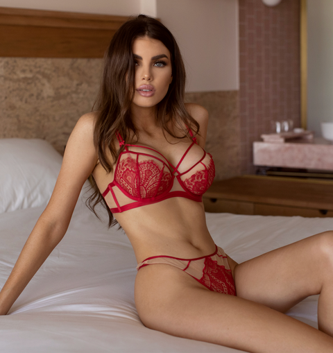 Now on Sale Drop Dead Red Collection - Sheer Cup Underwire Bra