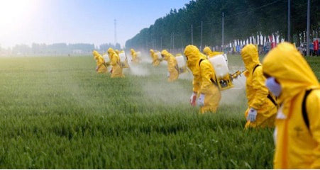 Crops being sprayed with pesticides