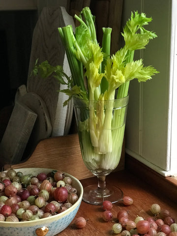Early 20th century Celery Glass