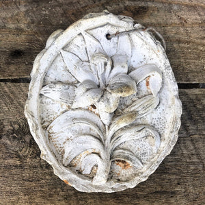 Old Plaster Cast of a Lilly