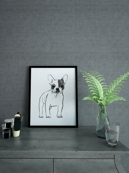 French Bulldog illustration screenprint by Tiff Howick in stylish interior room A4 small size art print