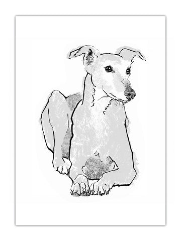 Greyhound illustration by Tiff Howick available as screenprinted art print, greeting card