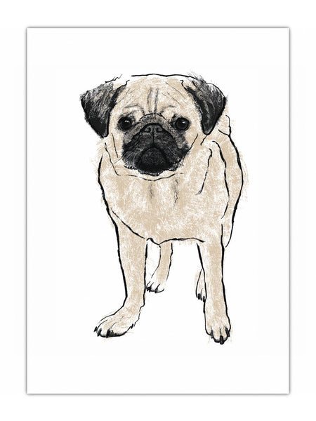 Pug illustration screenprint by Tiff Howick available as art prints, greeting cards, tea towels