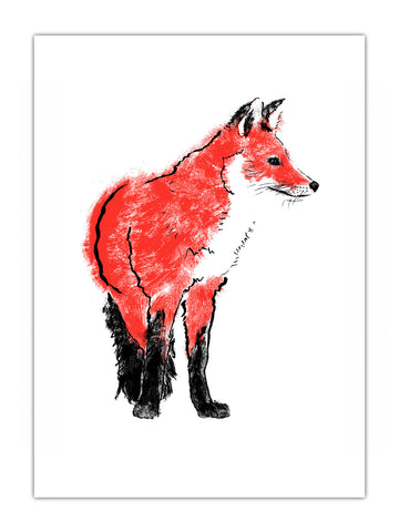 Red Fox illustration screenprint by Tiff Howick available as handmade art print, tea towel and greetings card