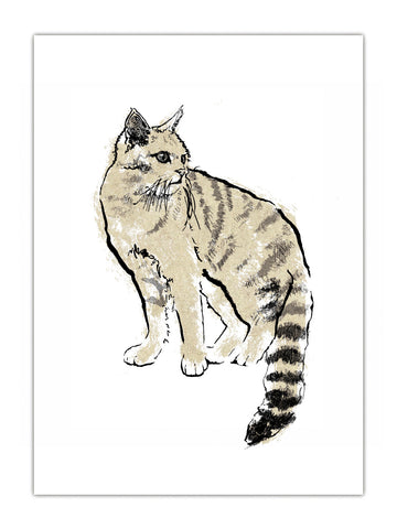 Scottish Wildcat illustration screenprint by Tiff Howick available as art prints and greeting cards