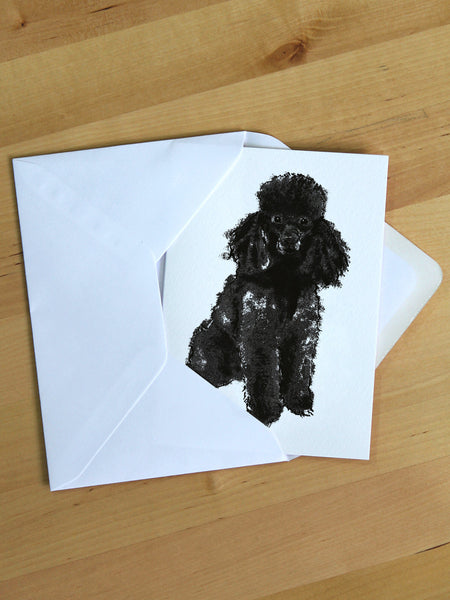 Black Poodle greeting card designed by Tiff Howick blank inside made in the UK from sustainably sourced card 105 x 148mm