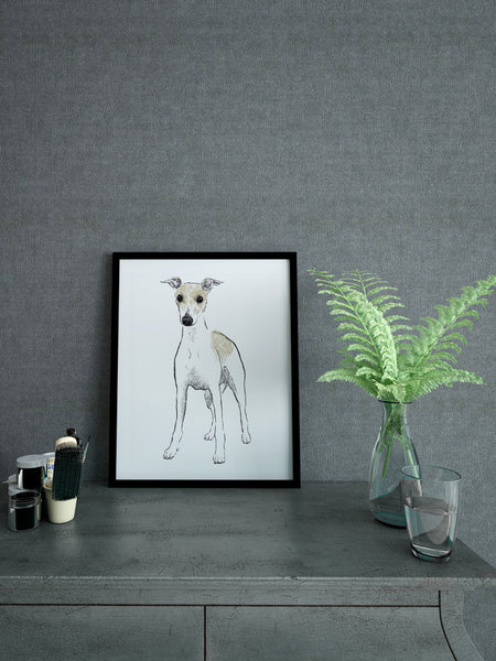 Whippet illustration screenprint by Tiff Howick stylish interior A4 small art print
