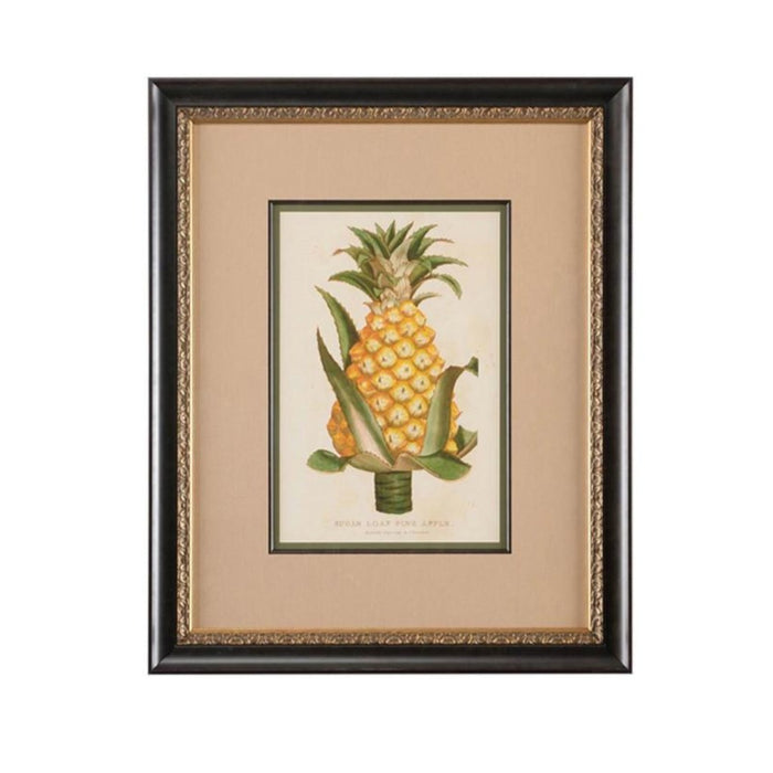 Sugarloaf Pineapple Botanical Print - CHELSEA HOUSE - The Shops at Mount Vernon