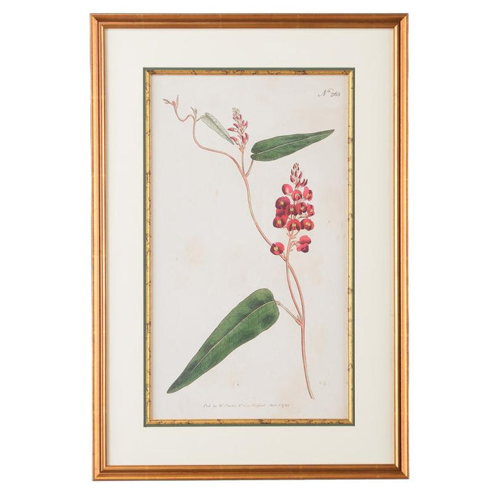 Native Lilac Botanical Print - CHELSEA HOUSE - The Shops at Mount Vernon