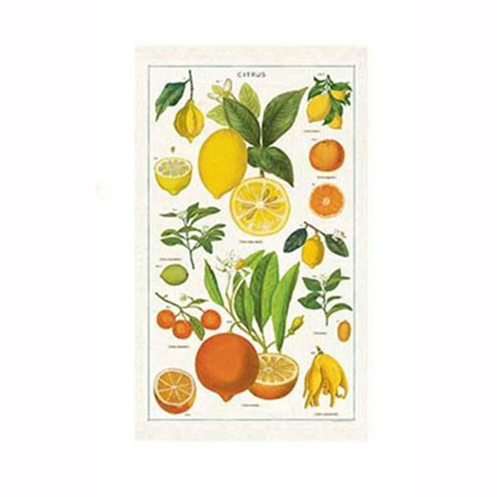 Citrus Tea Towel - Cavallini Papers & Co. Inc - The Shops at Mount Vernon