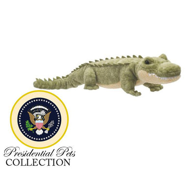 "John Quincy Adams' ""Alligator"""