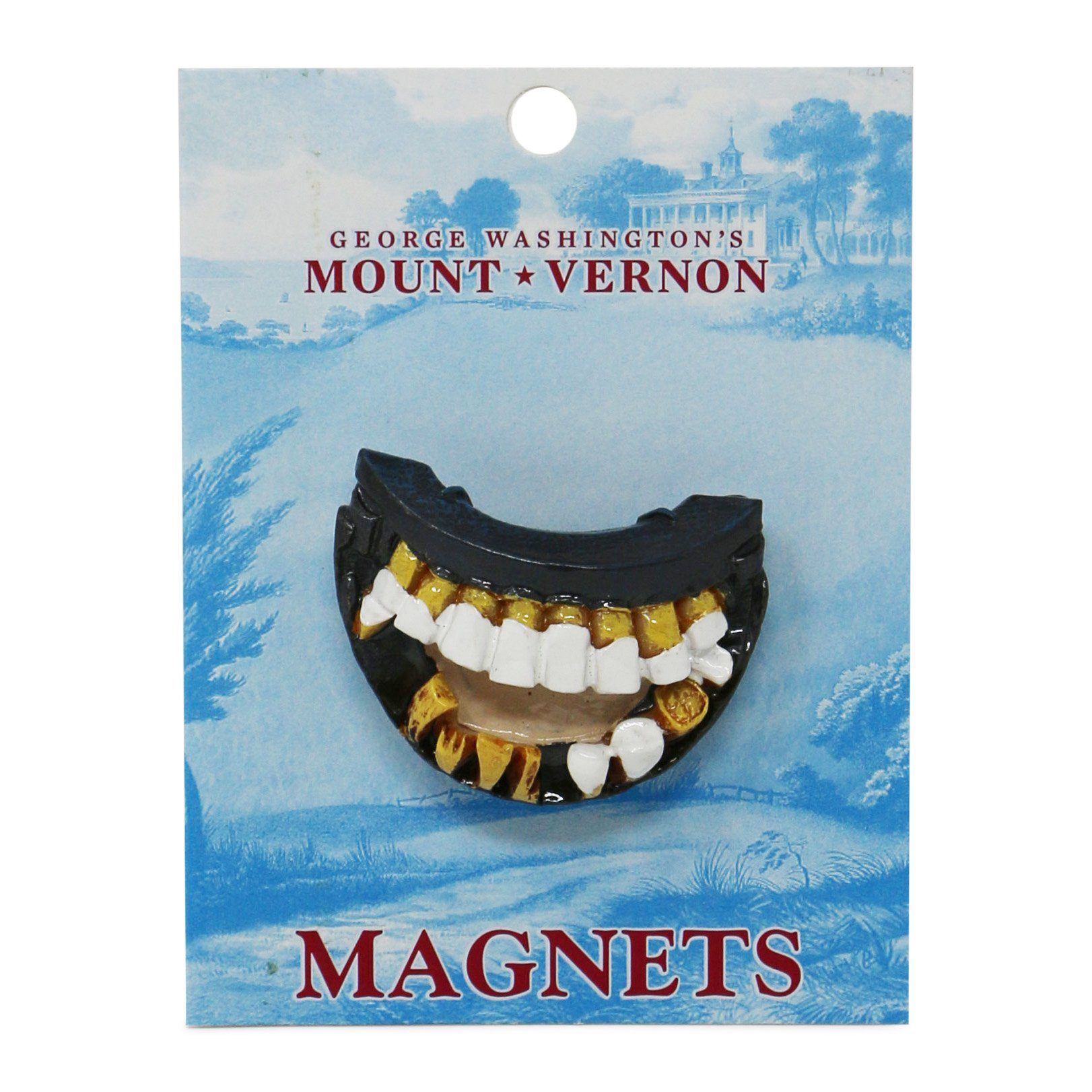 George Washingtons Teeth Magnet