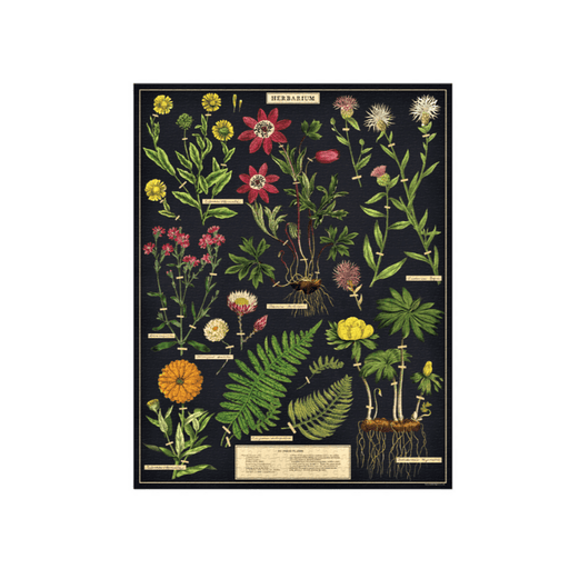 Herbarium Vintage Puzzle - Cavallini Papers & Co. Inc - The Shops at Mount Vernon